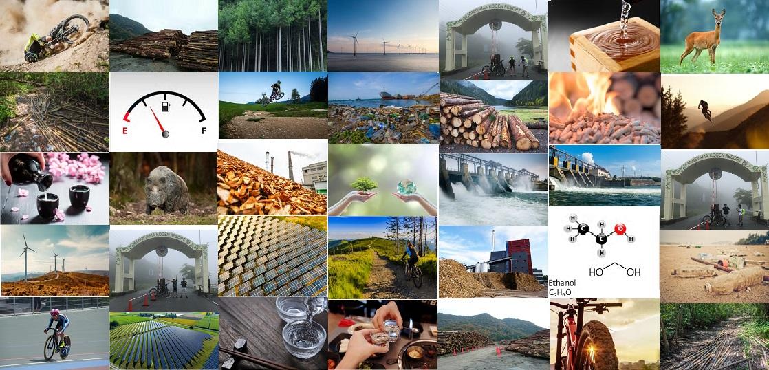 次世代エネルギー総合研究所